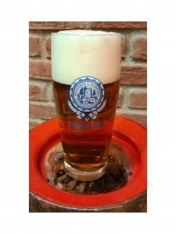 Brauerei Schübel, Stadtsteinach - Willibecher 0,5 Liter